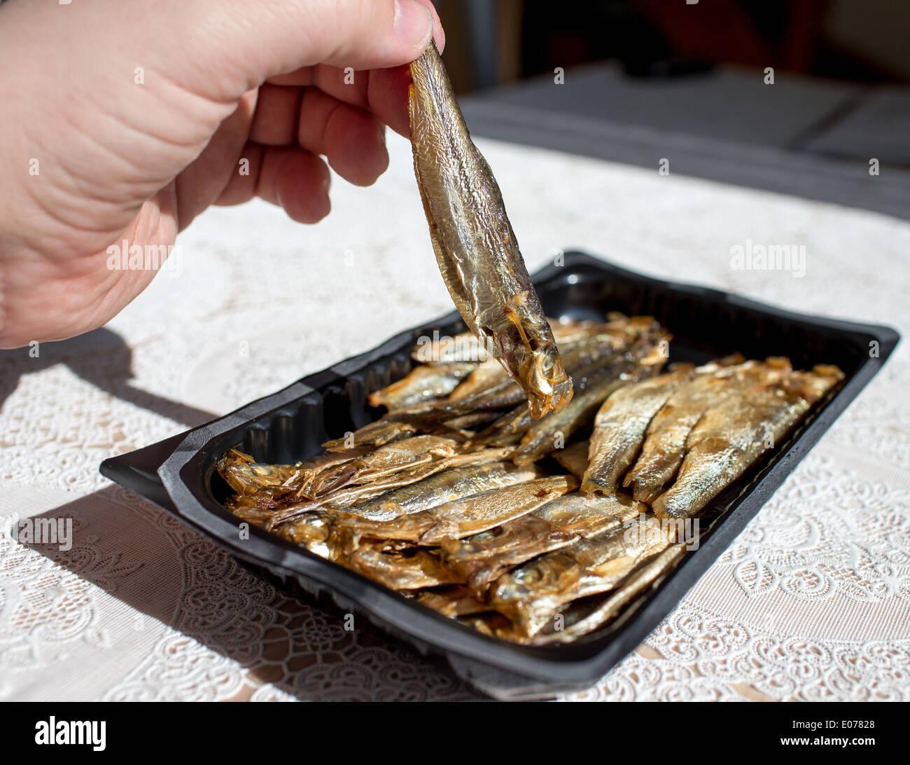 Vor dem Essen. Sprotten auf den polnischen Tisch in polnische Küche ...