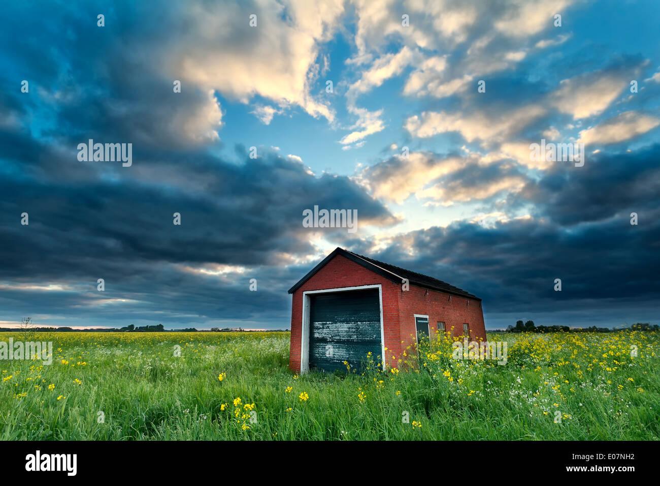 Bauernhaus auf Raps Feld bei stürmischen Sonnenuntergang, Niederlande Stockbild