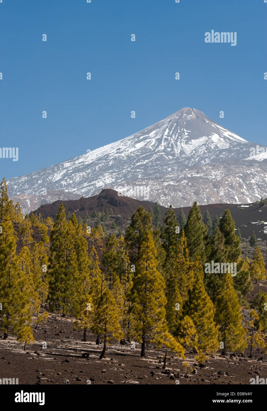 Pico de Teide, Teneriffa, Spanien - Pico de Teide, Teneriffa, Spanien Stockbild