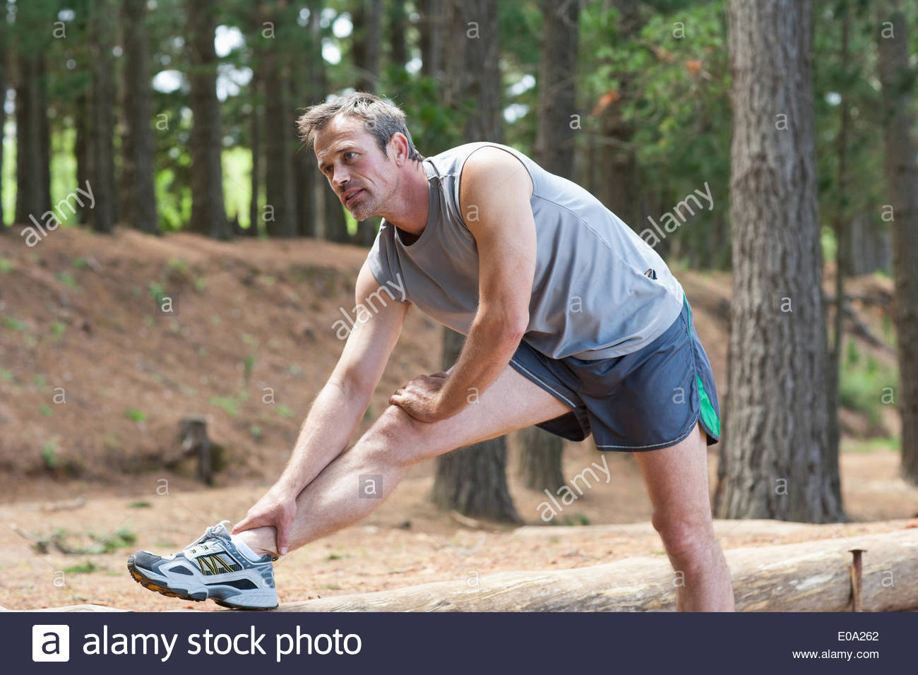 Mann dehnen vor dem Lauf im Wald Stockbild