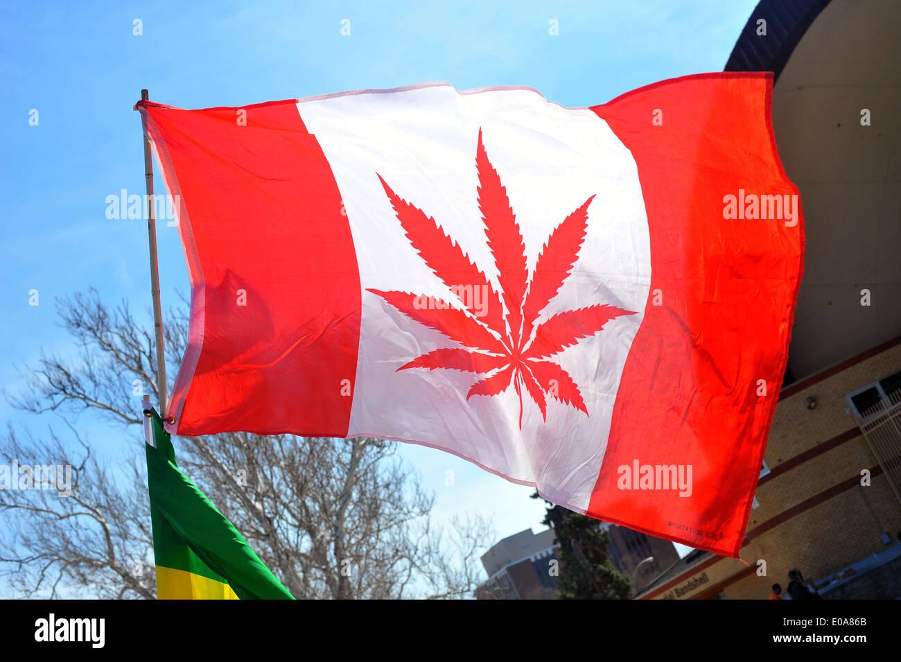 Bilder vom jährlichen 420 pro Cannabis Tag in London, Ontario am 20. April 2014 statt. Stockbild