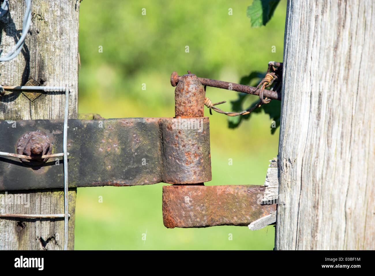tor scharnier stockfoto, bild: 69094752 - alamy