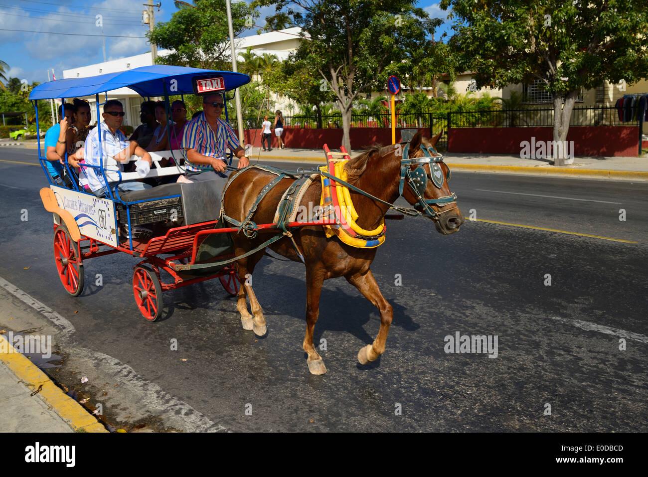Pferdegespann taxi mit Touristen auf der Straße im Zentrum von Varadero Kuba Stockbild