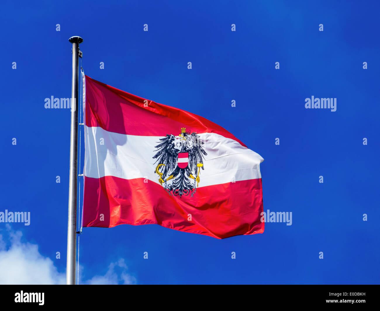 Die österreichische Fahne Weht Im Wind Vor Blauem Himmel Flagge