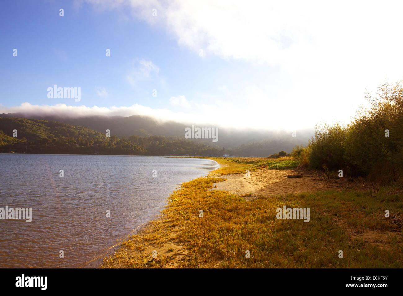 Ein Wanderweg entlang dem Wasser am Ufer des Tomales Bay. Stockbild