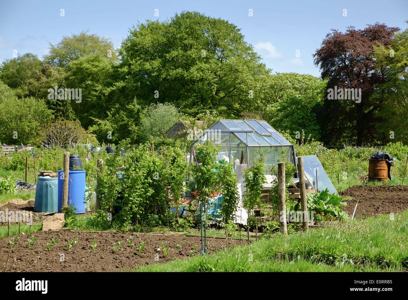 Kleingarten In England Vereinigtes Konigreich Mit Gewachshaus