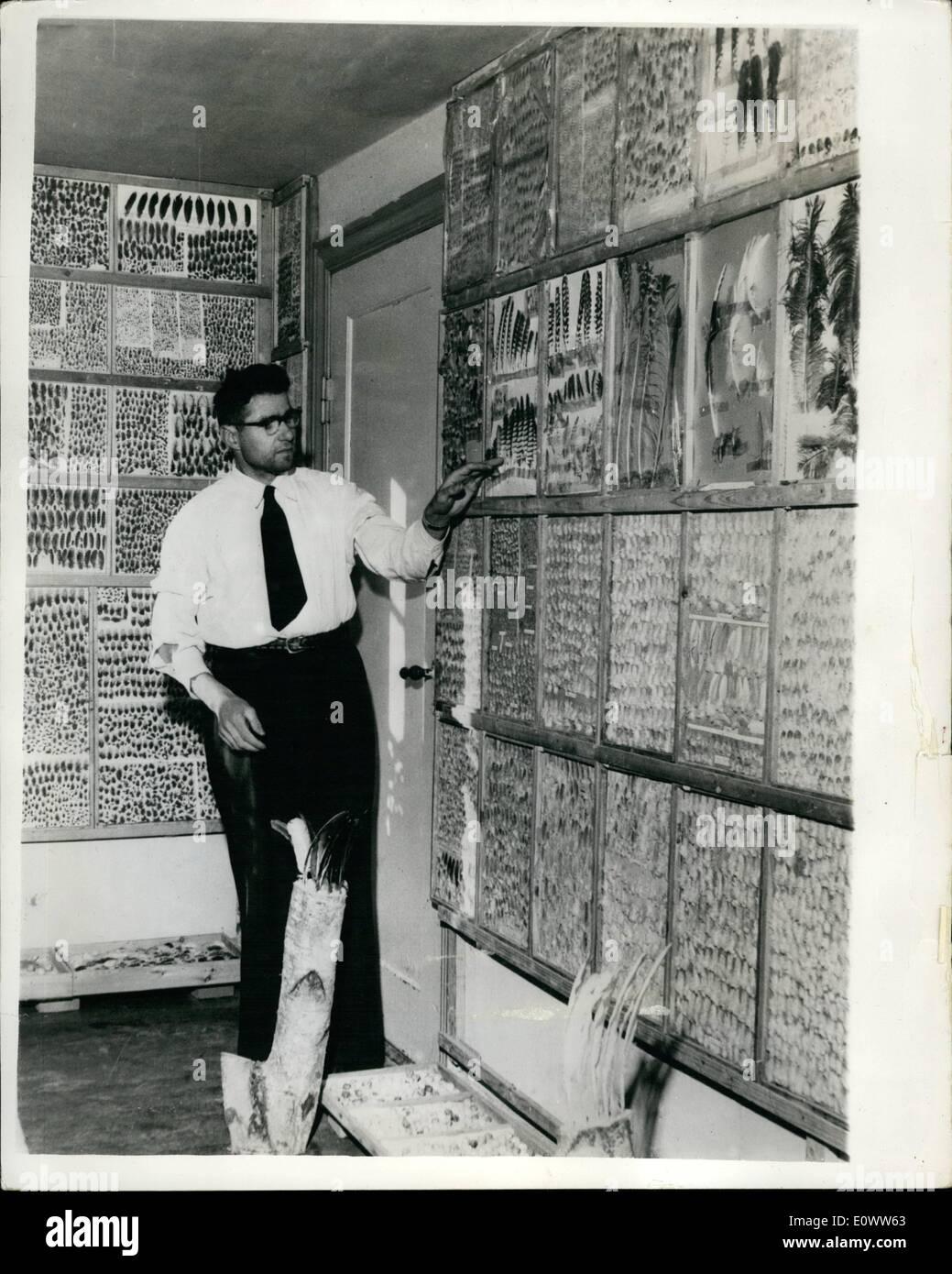10. März 1964 - 03.10.64 The Feather man 37 Jahr alt Herluf Hansen zurückgezogen hat, von der Landwirtschaft, weil er machen kann, ein viel besseres Leben aus Federn zu sammeln. Das mag ungewöhnlich erscheinen, aber Herluf, der in Dänemark lebt, sammelte 25 Millionen Federn, von denen er etwa 10 Millionen auf der ganzen seines Hauses eingefügt hat. Viele Menschen kommen in sein Haus, den ungewöhnlichen Anblick zu sehen, und natürlich zahlen sie für die Zulassung, die ist, wie er ein Leben macht. Er hat seinen Anblick auf einer Gesamtfläche von 100 Millionen gesetzt. Stockbild