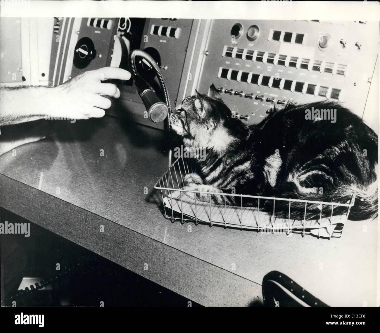 Erfreut Katzen Die Drähte Kauen Bilder - Der Schaltplan - greigo.com