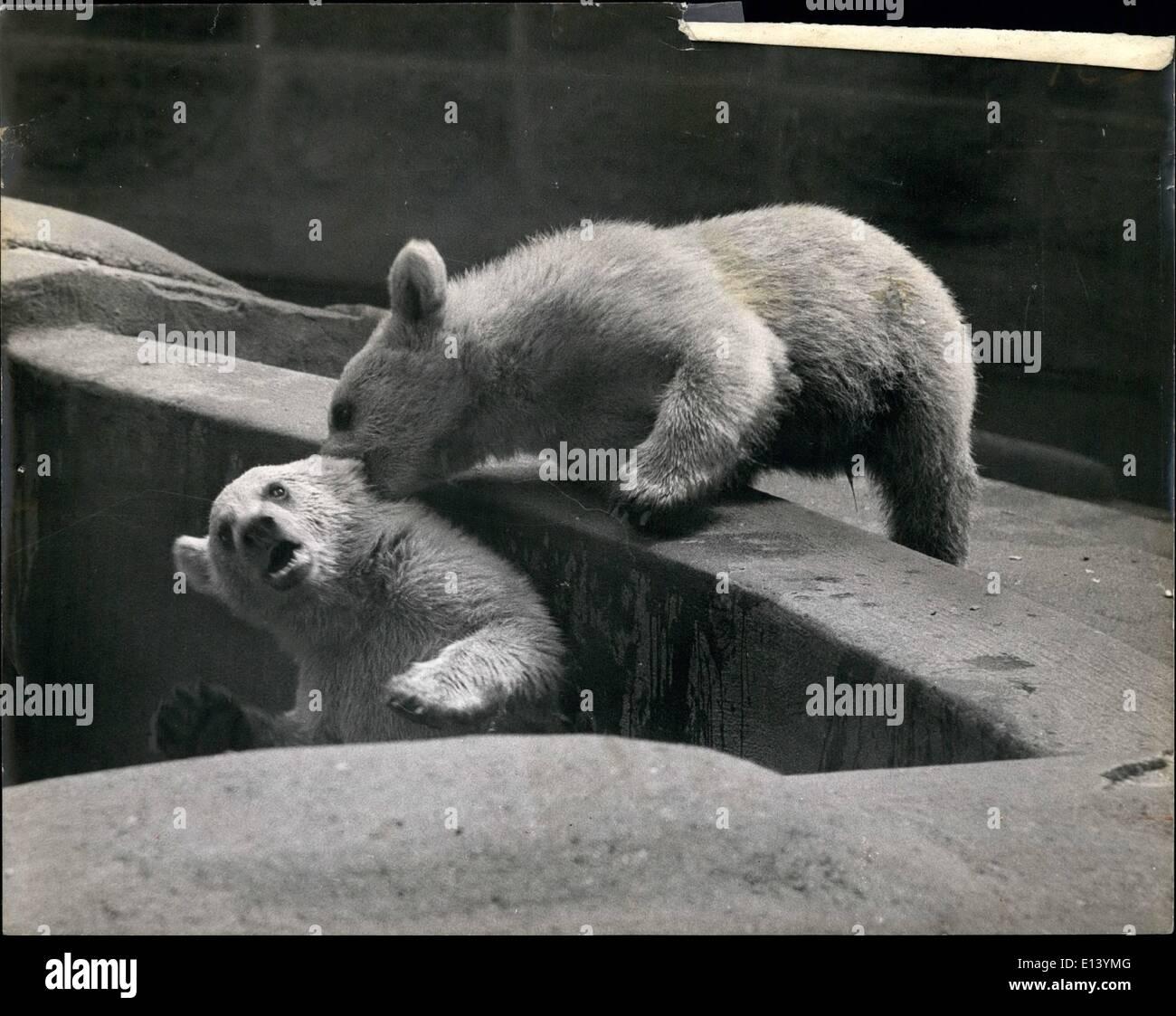 White Lion Babies Stockfotos & White Lion Babies Bilder - Alamy