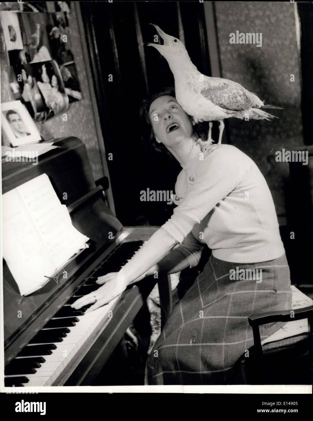 17. April 2012 - Peter ist eine musikalisch Gleichgesinnten Möwe und wenn Frau Thorner Klavier spielt sitzt er auf ihre Schulter und trällert. Stockbild