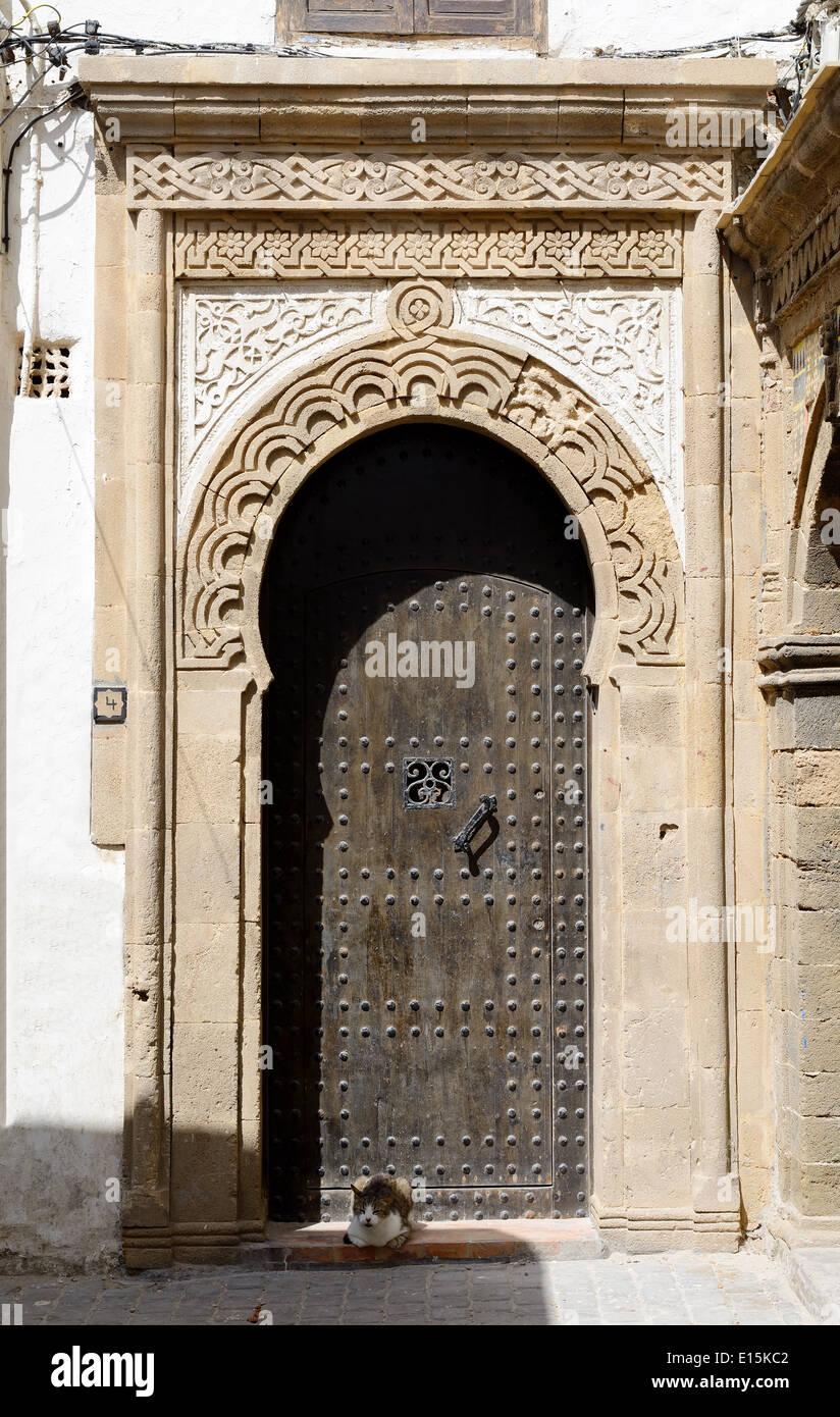 Schöne detaillierte Tür in Marokko mit Katze. Stockbild