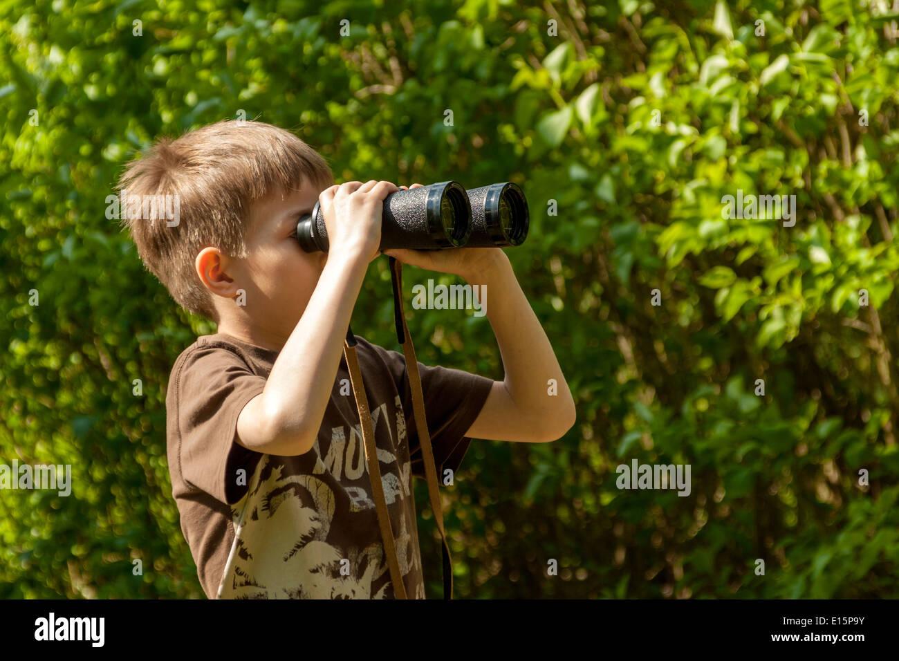 Junge vögel zu beobachten durch ein fernglas in einem wald