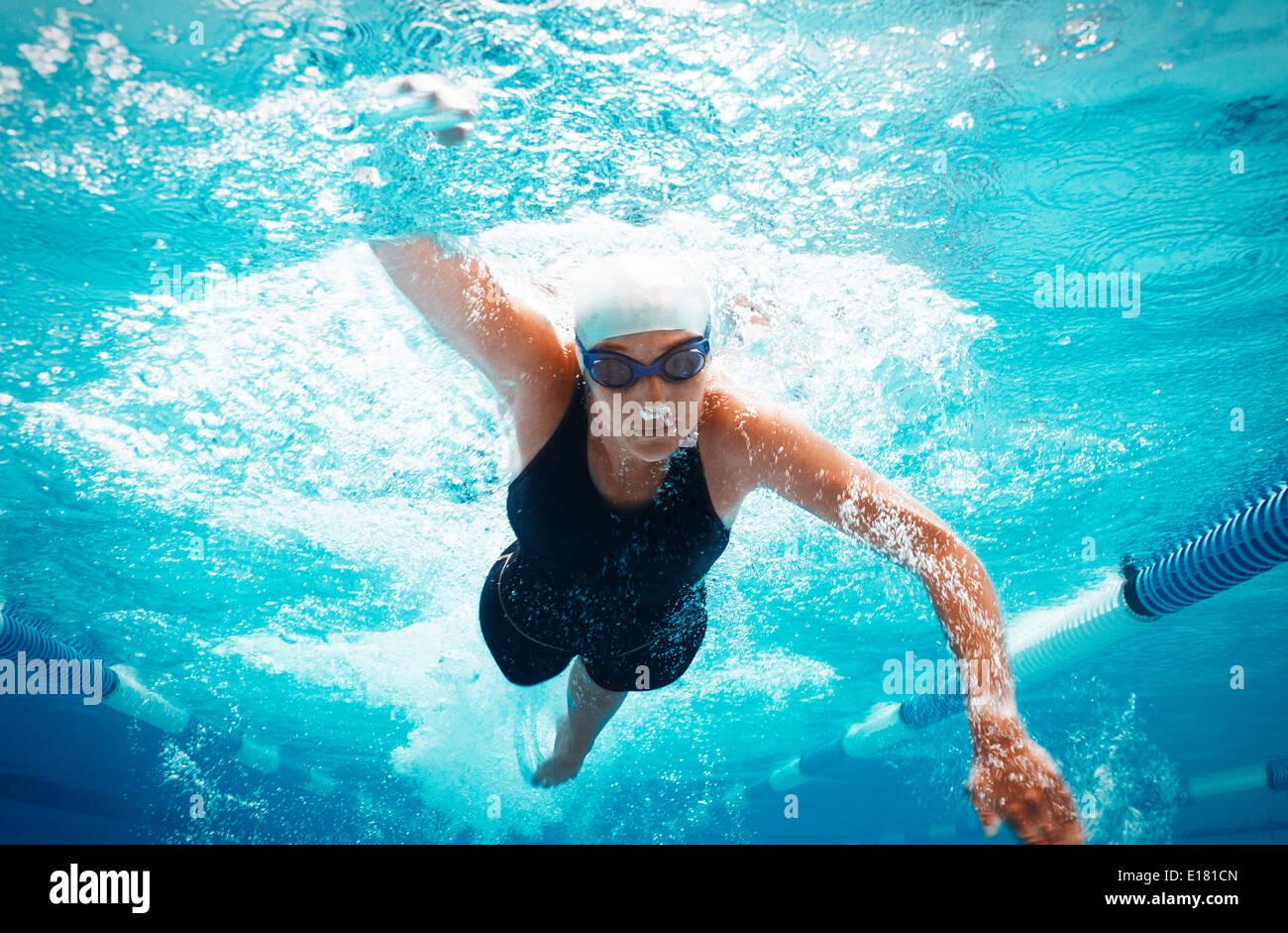 Schwimmer im Pool racing Stockbild