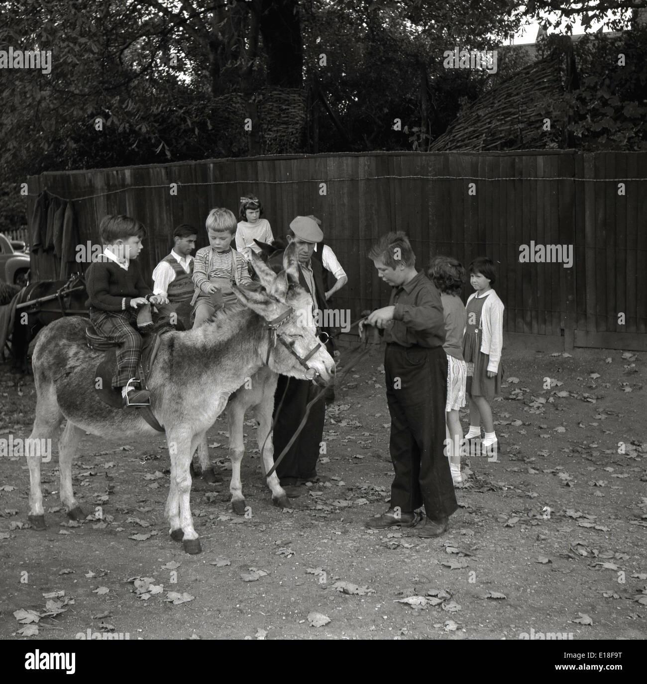 Teenager Mädchen mit großen Eseln Große frei