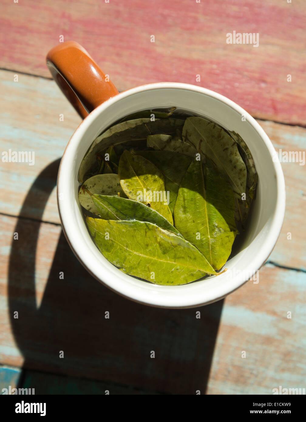 Coca-Blätter in heißem Wasser, Coca Tee zu machen;  Was ist ein Heilmittel für Höhenkrankheit in bergigen Regionen von Südamerika. Stockbild