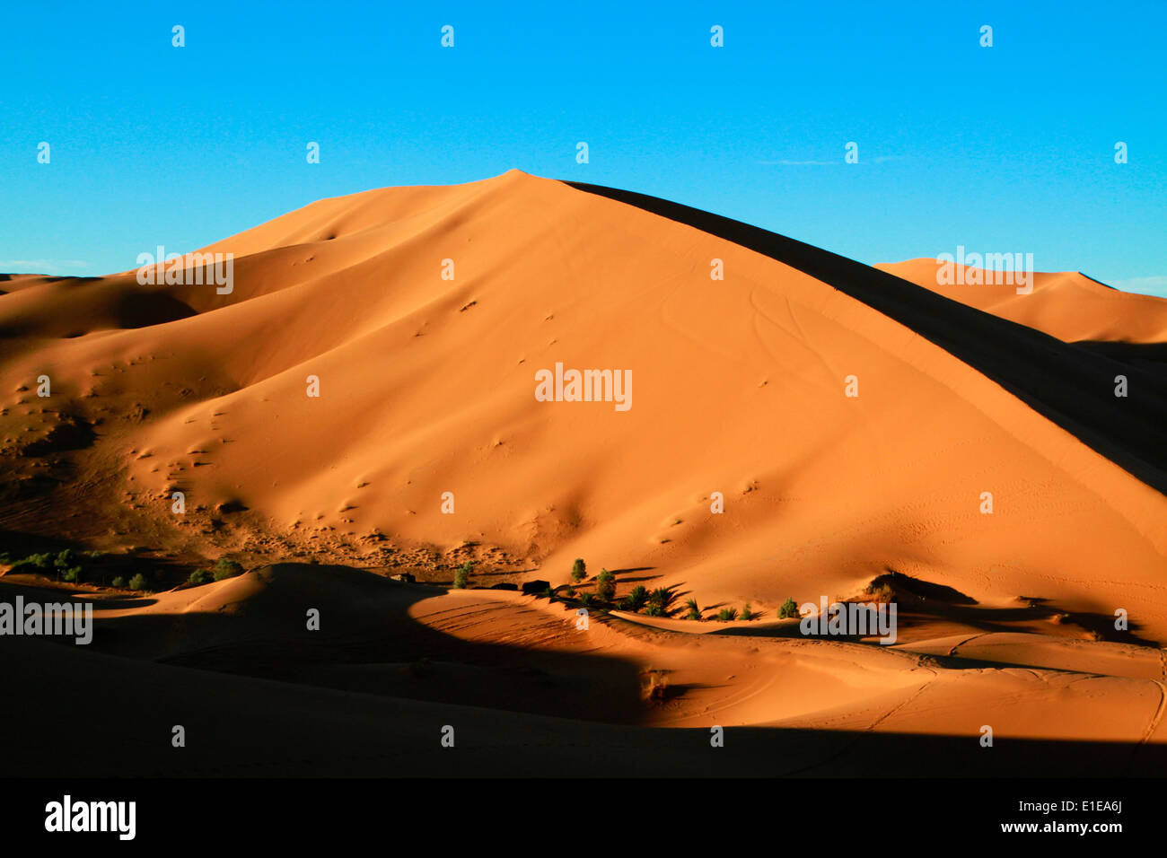 Erg Chebbi Sanddünen in der Sahara Wüste in der Nähe von Merzouga, Marokko Stockfoto