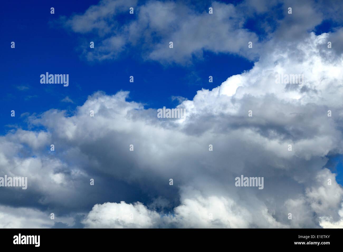 Cumulus-Wolken weiße, graue Wolken, blauer Himmel Wolke Himmel UK Stockbild