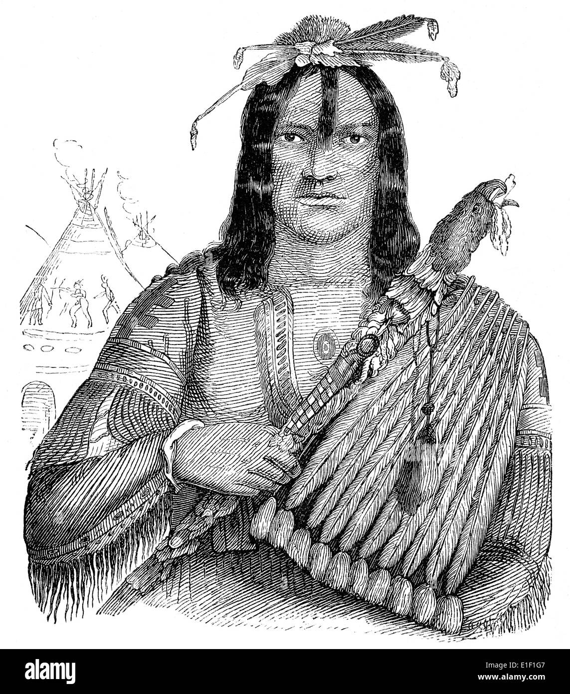 Typ eines nichtvegetarischen, Indianer, Menschen-Bildes aus dem 19. Jahrhundert, 1872, Deutschland, Europa Stockbild