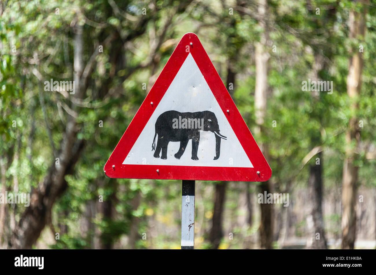 Verkehrszeichen, Warnung vor Überquerung Elefanten, Nagarhole Nationalpark, Karnataka, Indien Stockbild