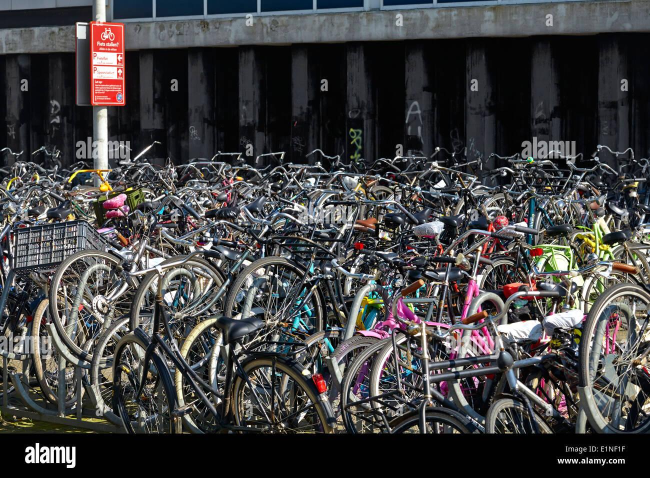 amsterdam fahrrad parken holland niederlande stockfoto bild 69928923 alamy. Black Bedroom Furniture Sets. Home Design Ideas