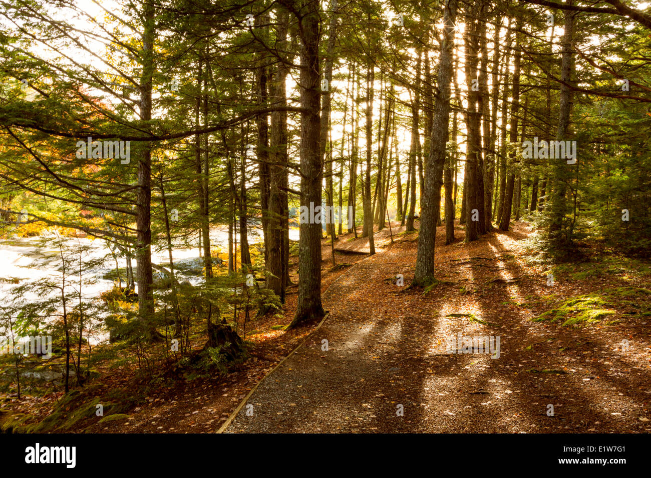 Mühlen-Fälle, Mersey River, Kejimkujik Nationalpark, Nova Scotia, Kanada Stockbild