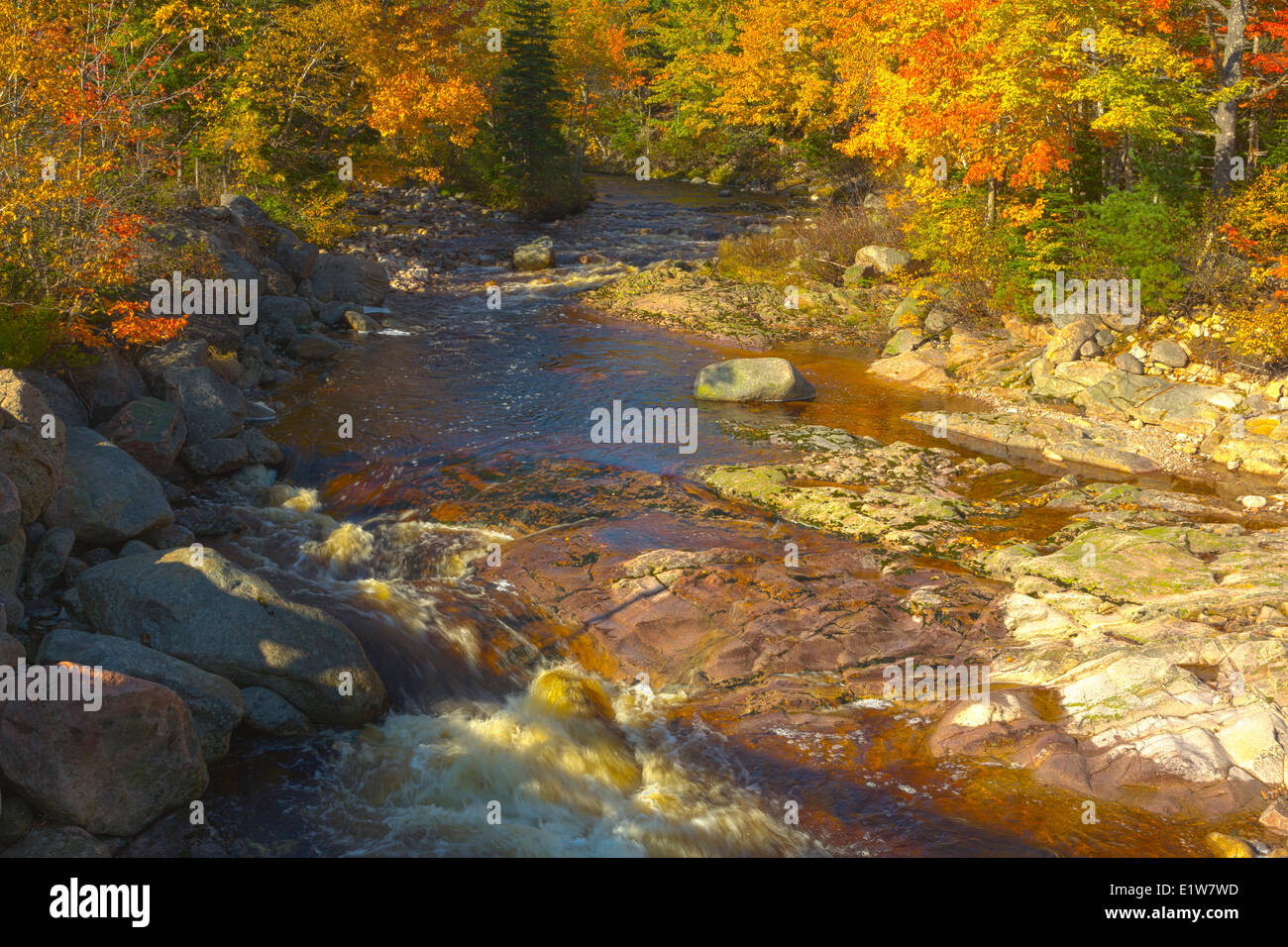 Noch Brook, Kap-Breton-Highlands-Nationalpark, der Cabot Trail, Cape Breton, Nova Scotia, Kanada Stockbild