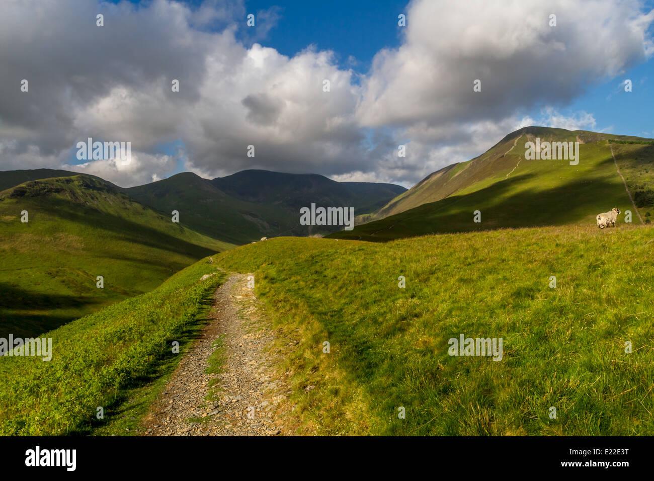 Inspirierendes Bild des englischen Lake District. Grisedale Pike auf dem Recht, Teil der Coledale Hufeisen. Stockbild