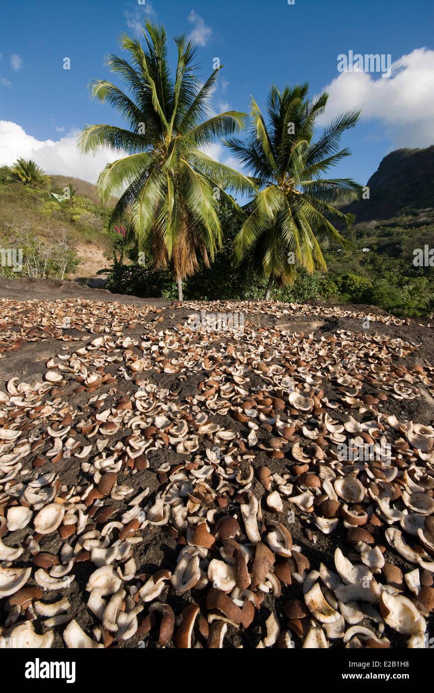 Frankreich Französisch Polynesien Marquesas Inseln Ua Pou Island