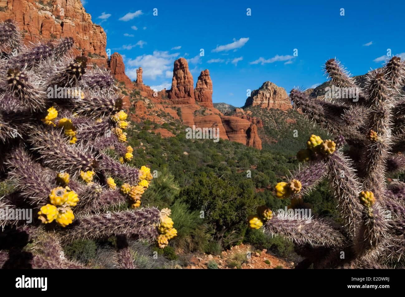 USA Arizona Sedona Stockbild