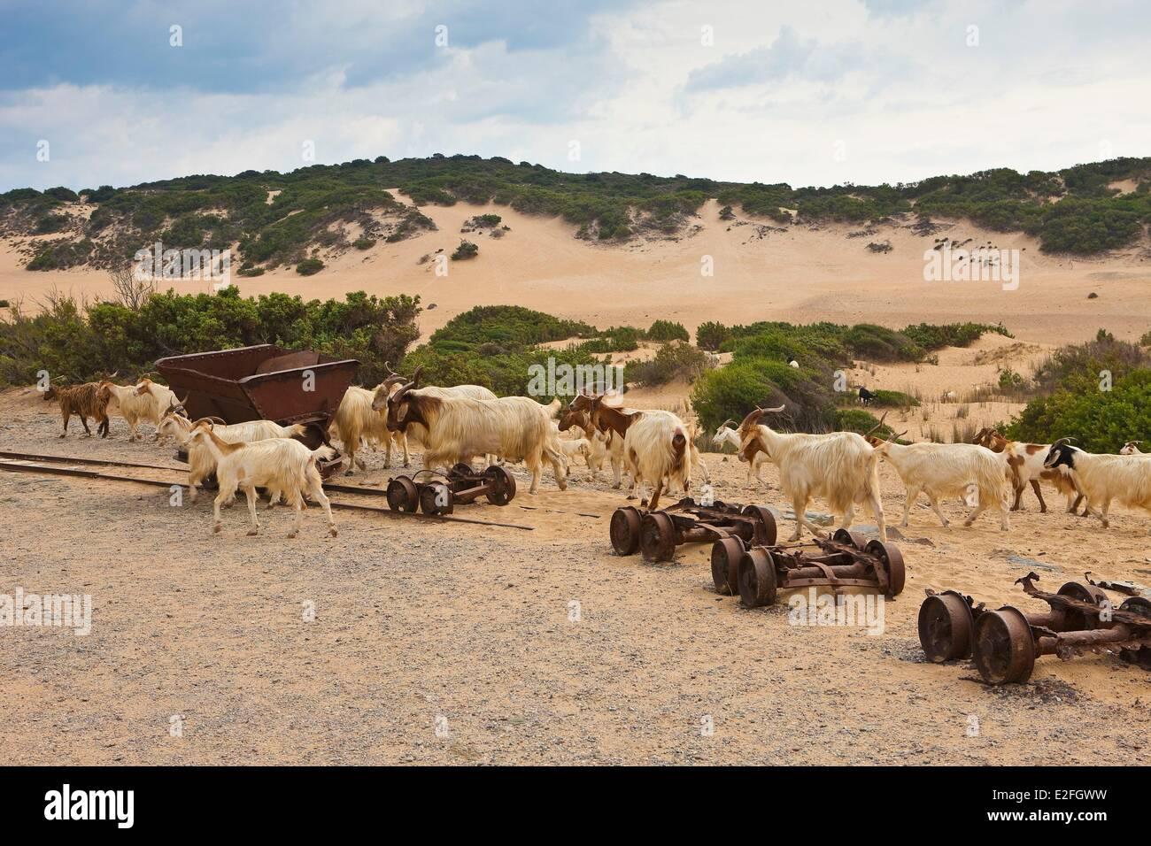 Italien, Sardinien, Provinz Medio Campidano, die Costa Verde, Dünen von Piscinas Überreste von Minen und Stockbild