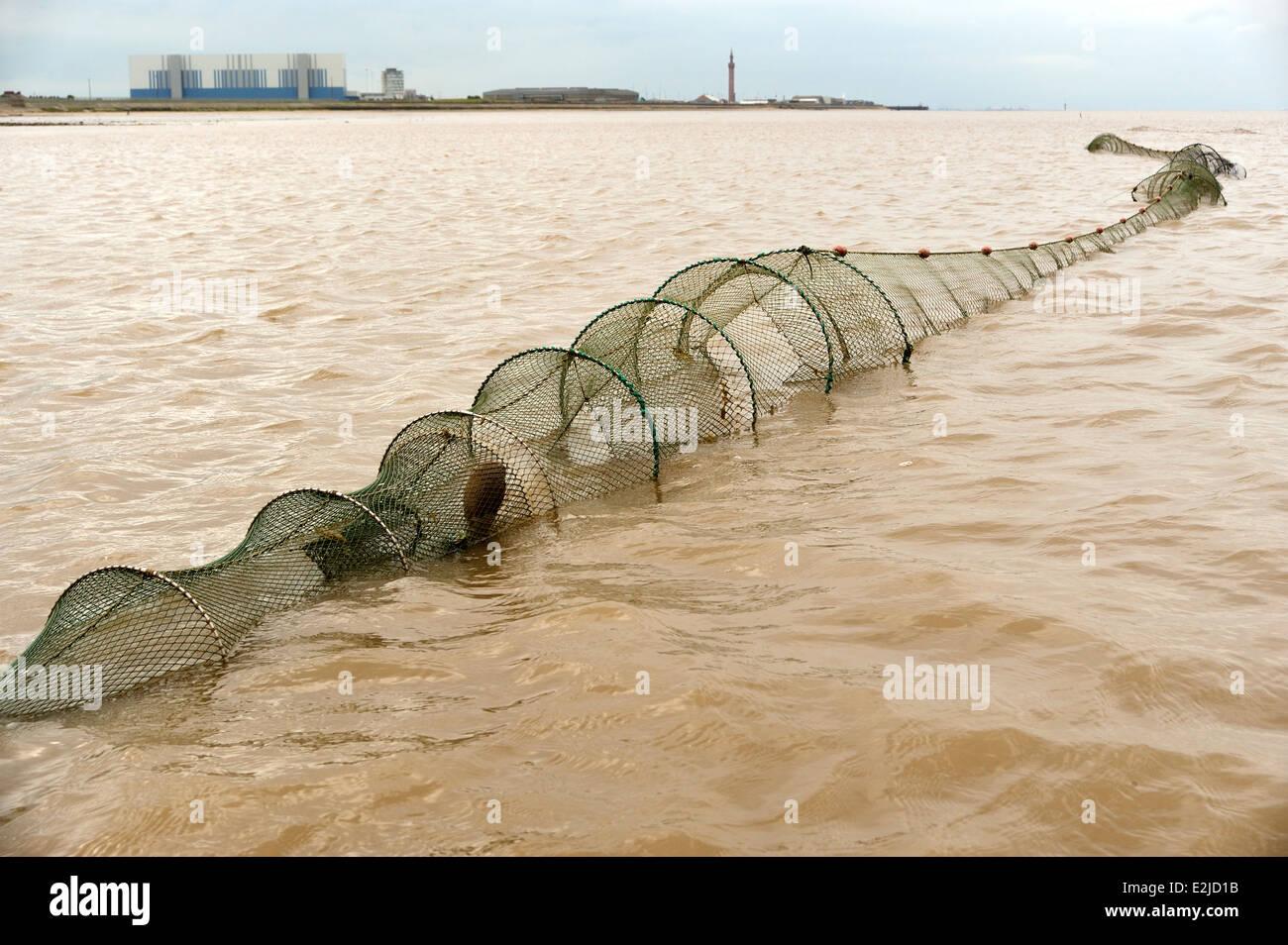 Traditionelles Fischen für Sohlen und Aale mit Doppel endete Fyke Netze auf der Humber Mündung Wattenmeer Stockfoto