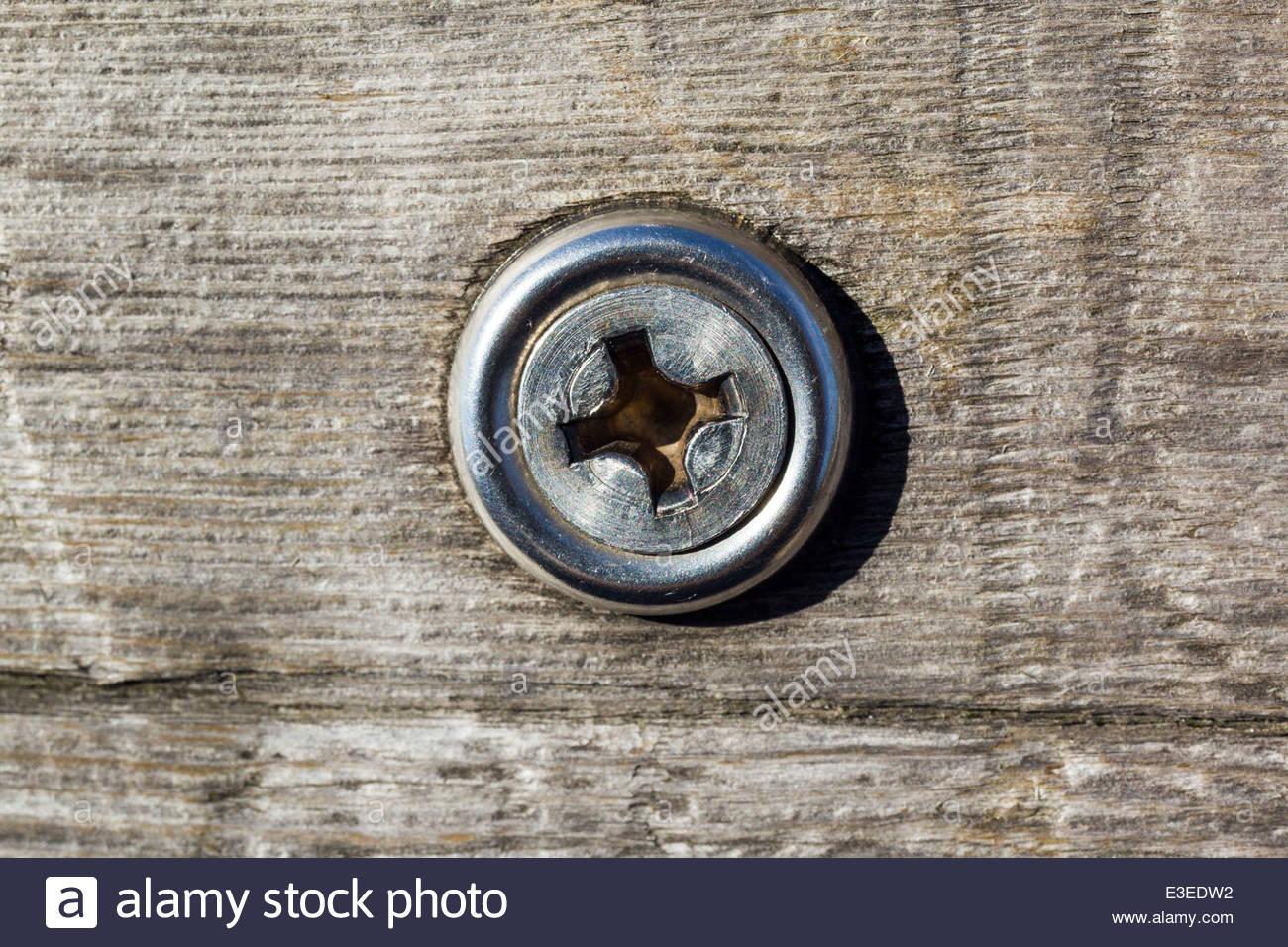 Schraube Kreuzschlitz ist die beliebteste Schraube in der Welt Stockbild