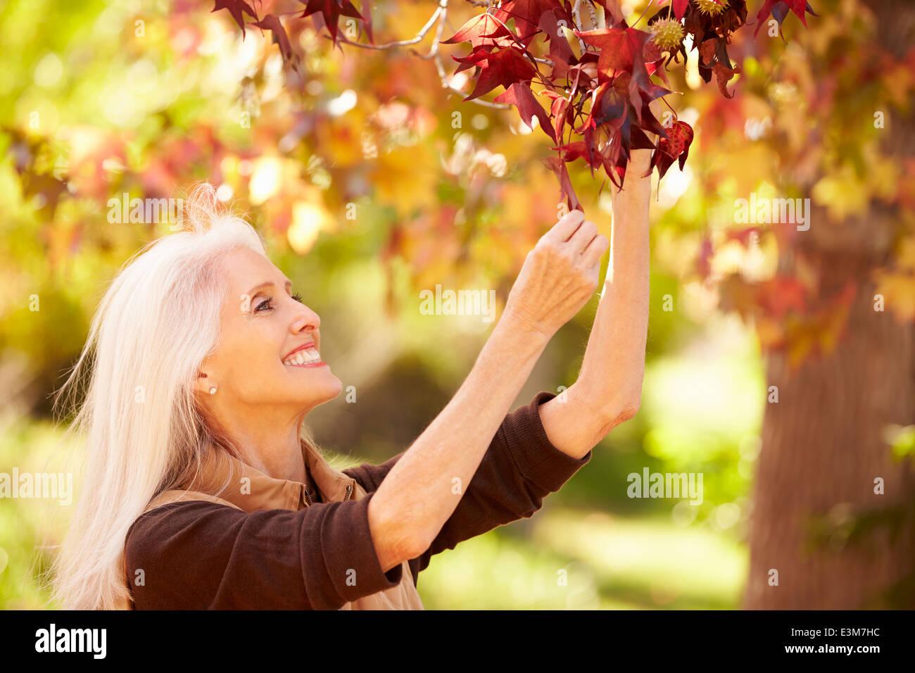 Reife Frau In Herbst Landschaft entspannen Stockbild