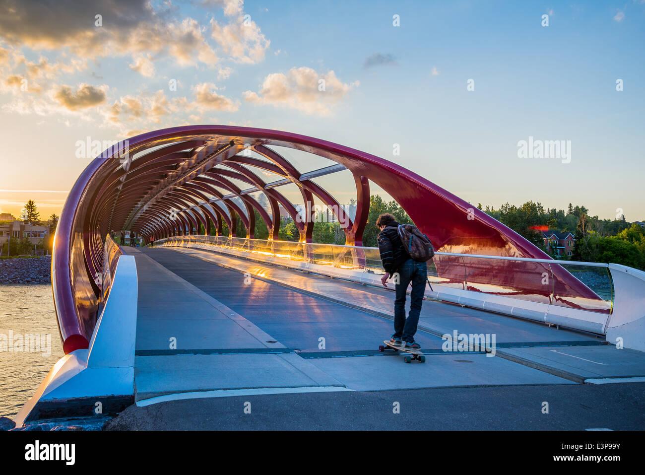 Die Peace Bridge, Calgary, Alberta, Kanada Stockbild
