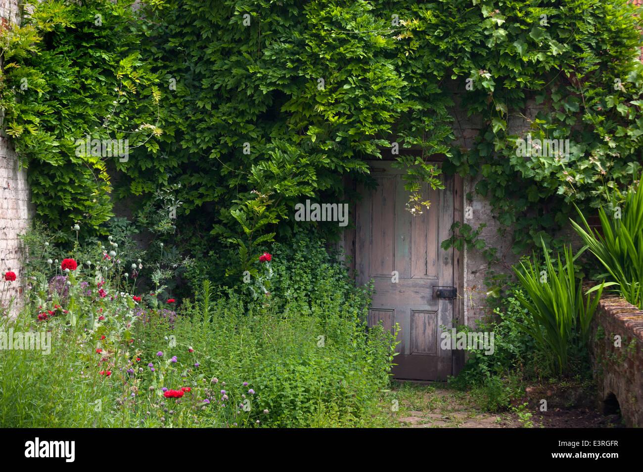 Alte Tür Im Verlassenen Garten