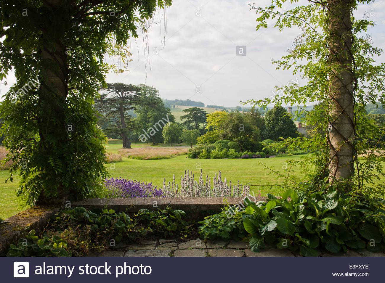 Frame Landschaft Rasen Bäume malerische steinerne Pergola West Dean Sussex Ansicht Sommer Klettern Rosen Clematis Stockbild
