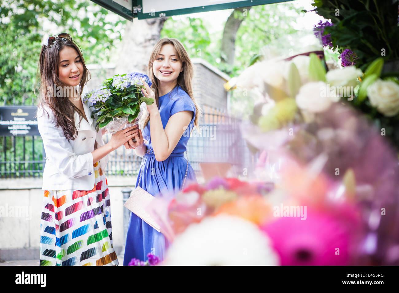 Zwei junge Frauen, die Abholung Topfpflanze Stockbild