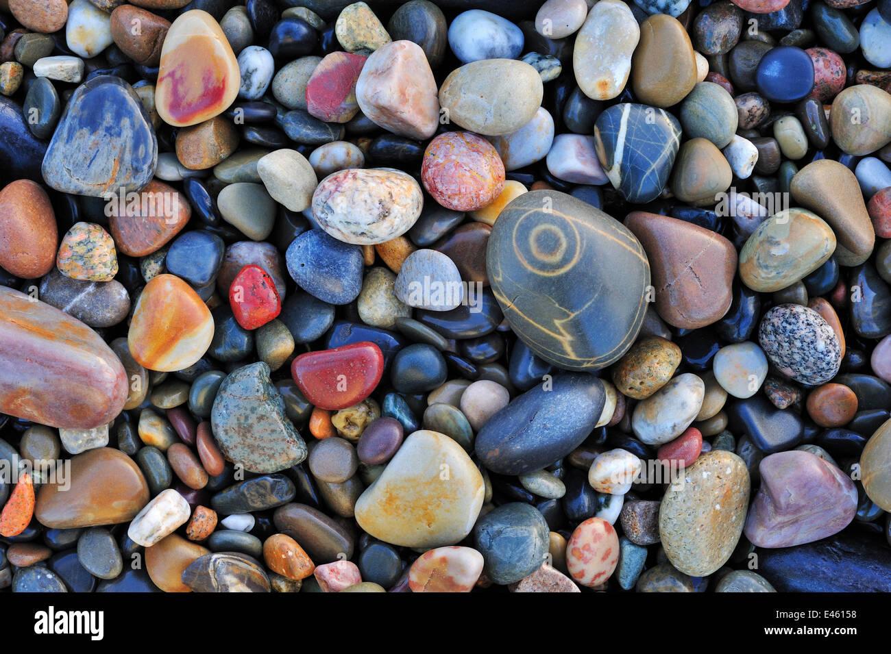 Buntes Wasser geglättet Kieselsteine am Kiesstrand. Normandie, Frankreich, Oktober 2010. Stockbild