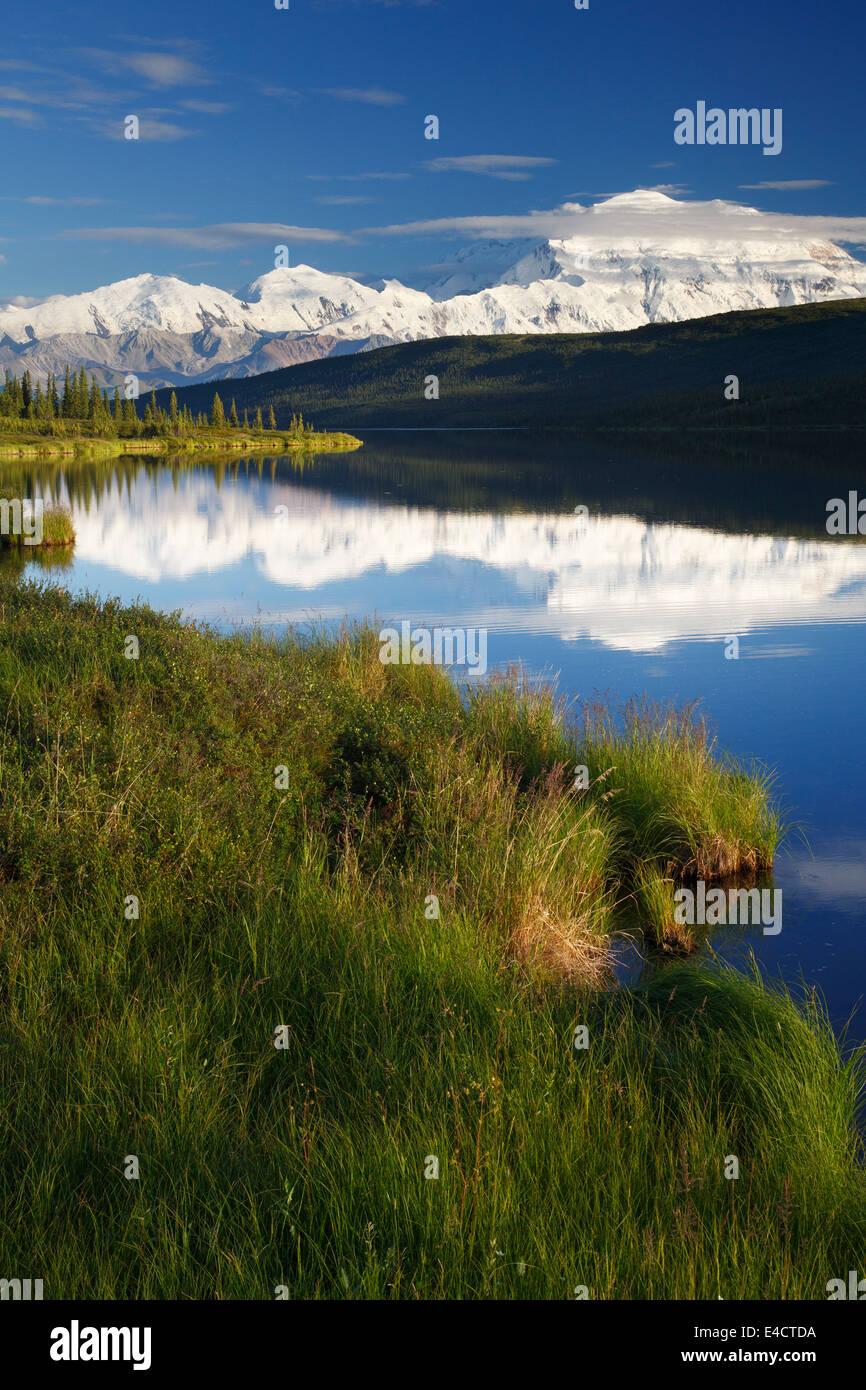 Mt. McKinley, auch bekannt als Denali aus Wonder Lake, Denali-Nationalpark, Alaska. Stockbild