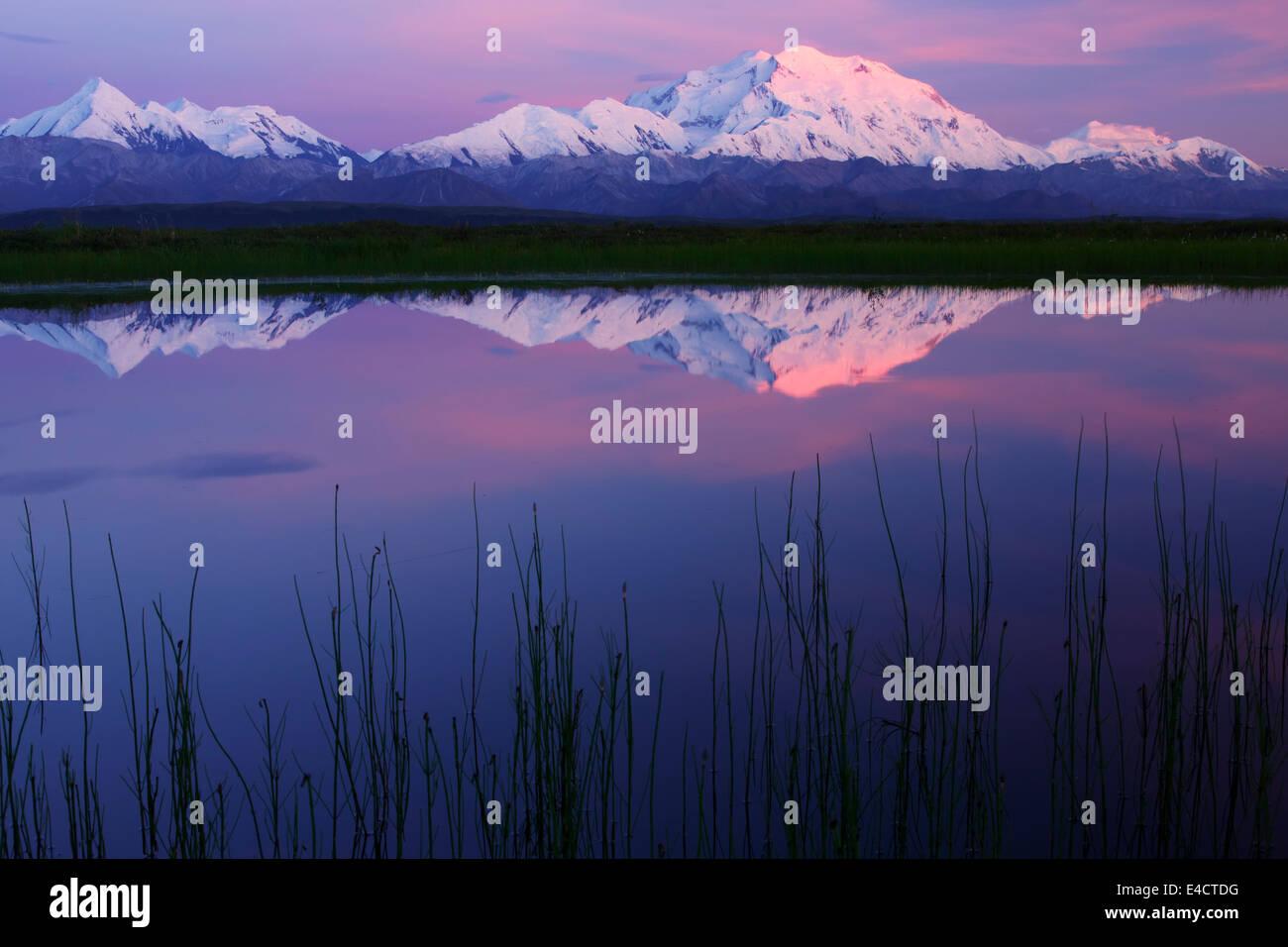 Mt. McKinley, auch bekannt als Denali Denali Nationalpark, Alaska. Stockbild
