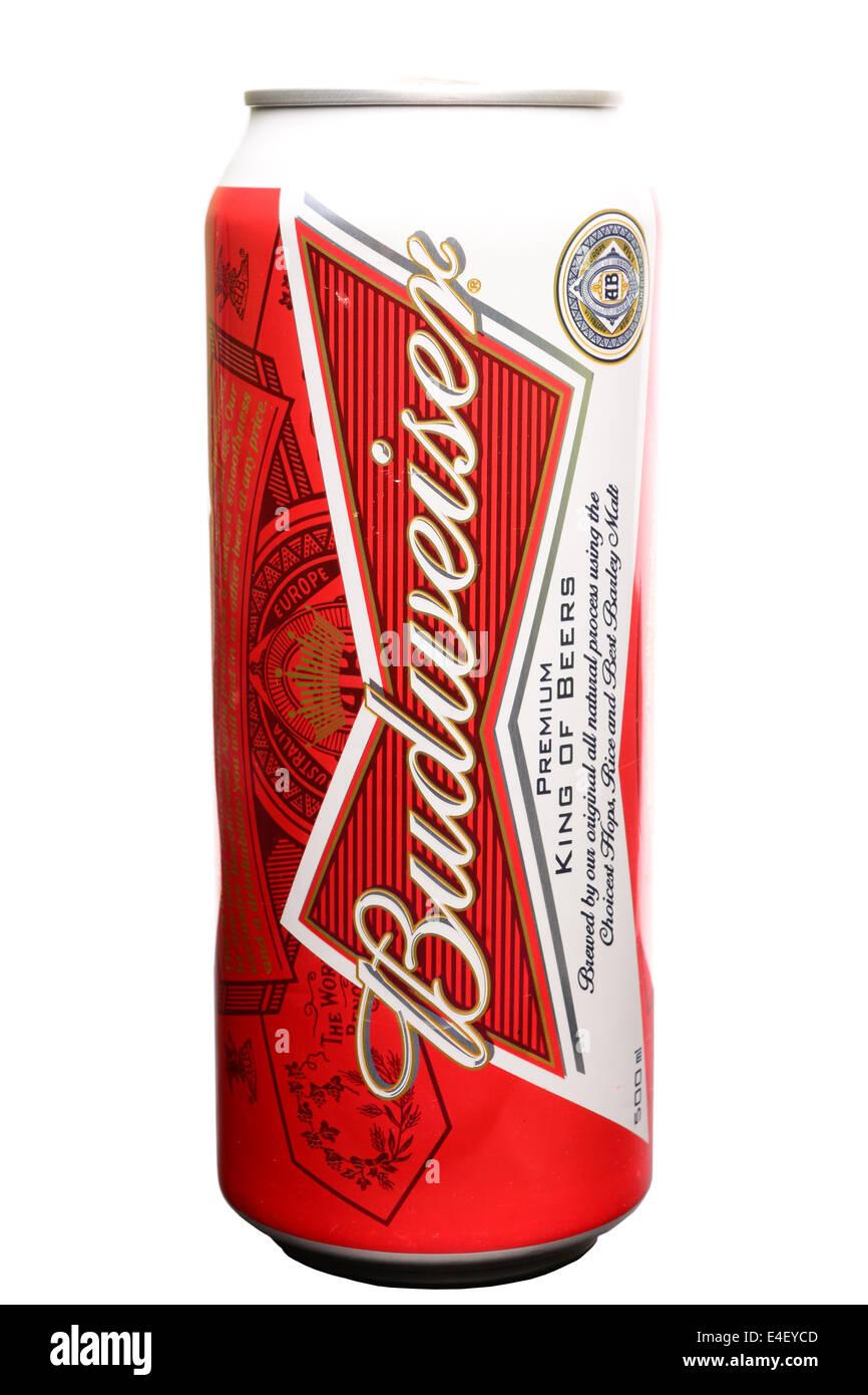 Budweiser Dose
