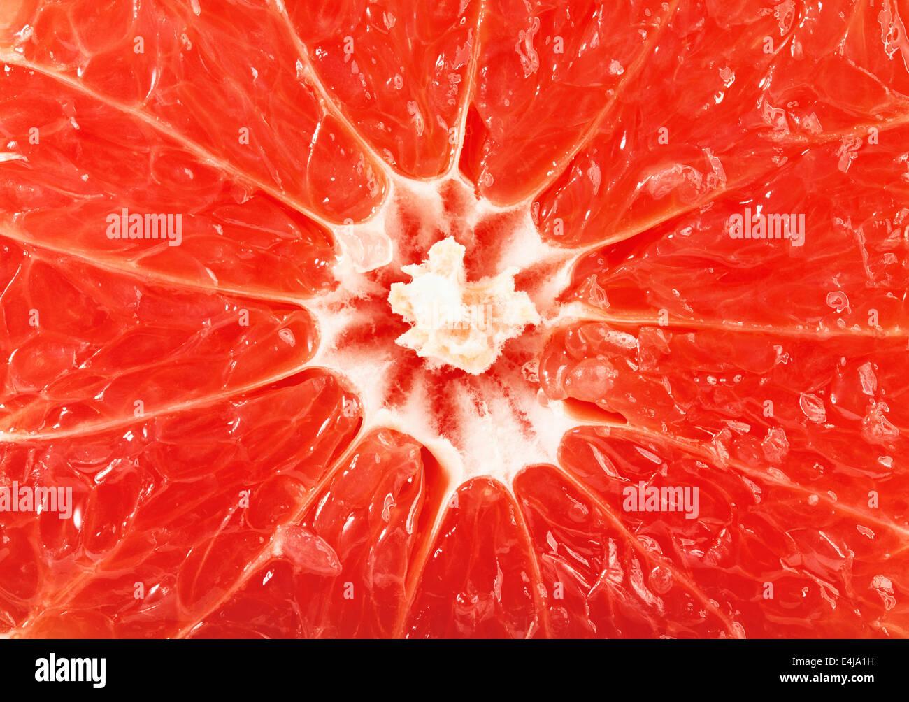 Grapefruit-Scheiben-Hintergrund für Sie entwerfen Stockbild