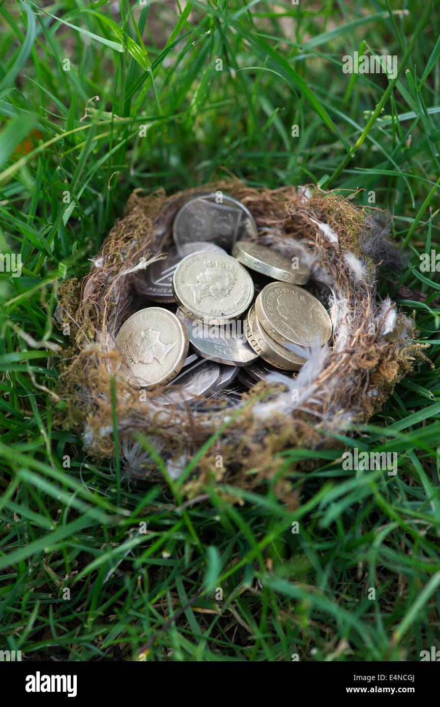 Englische Münzen in einem Vogelnest auf Rasen Stockfoto