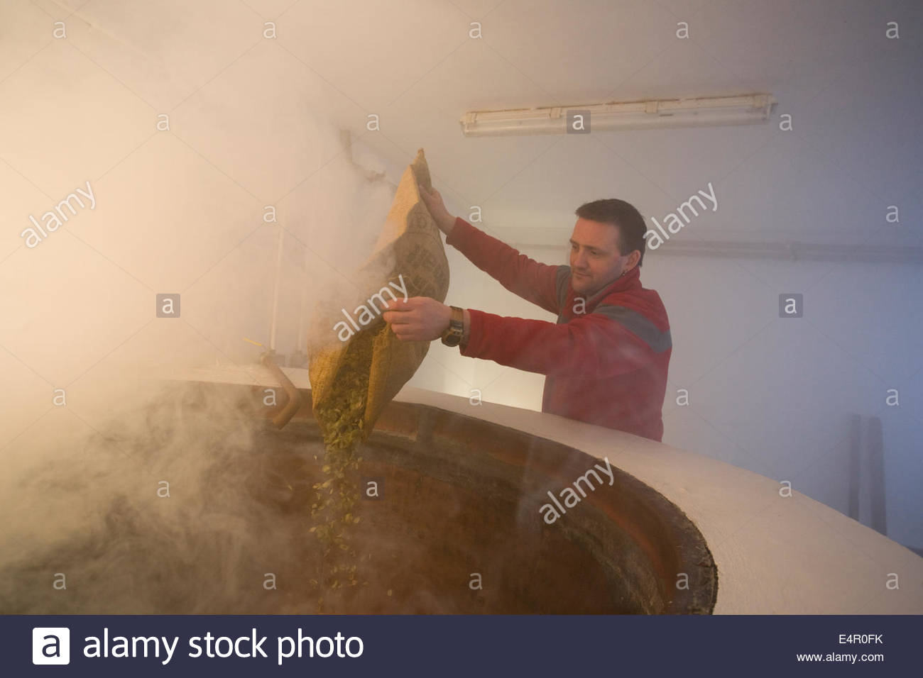 Ein Brauer der kochenden Würze in zu den Heißwassertank Schnaps am ...