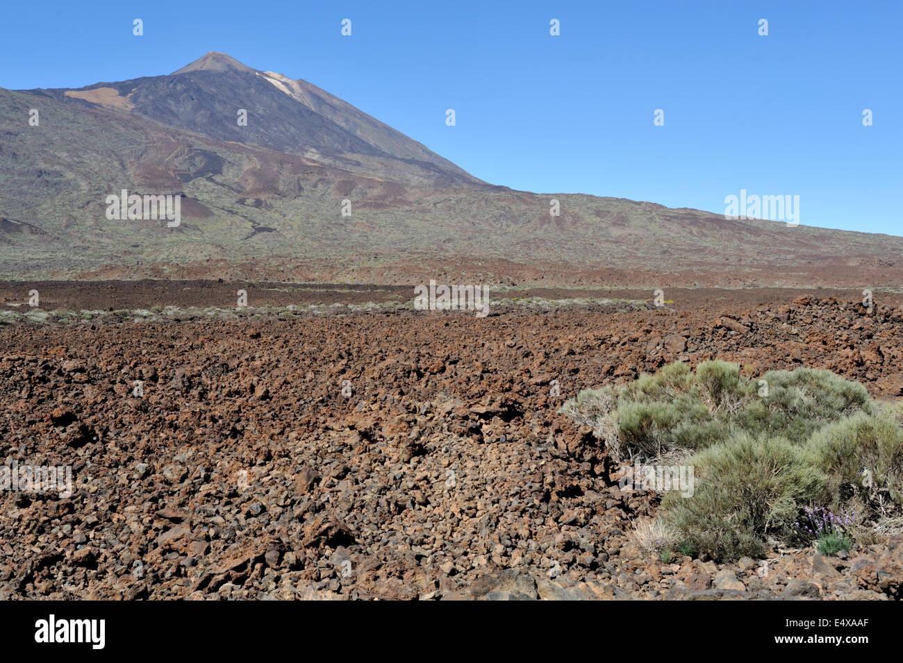 Mount Teide Vulkan Nationalpark mit Lavastrom im Vordergrund, Teneriffa Stockbild