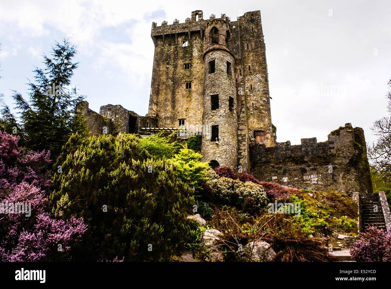 Irische Burg von Blarney, berühmt für den Stein der Beredsamkeit. Irland Stockbild