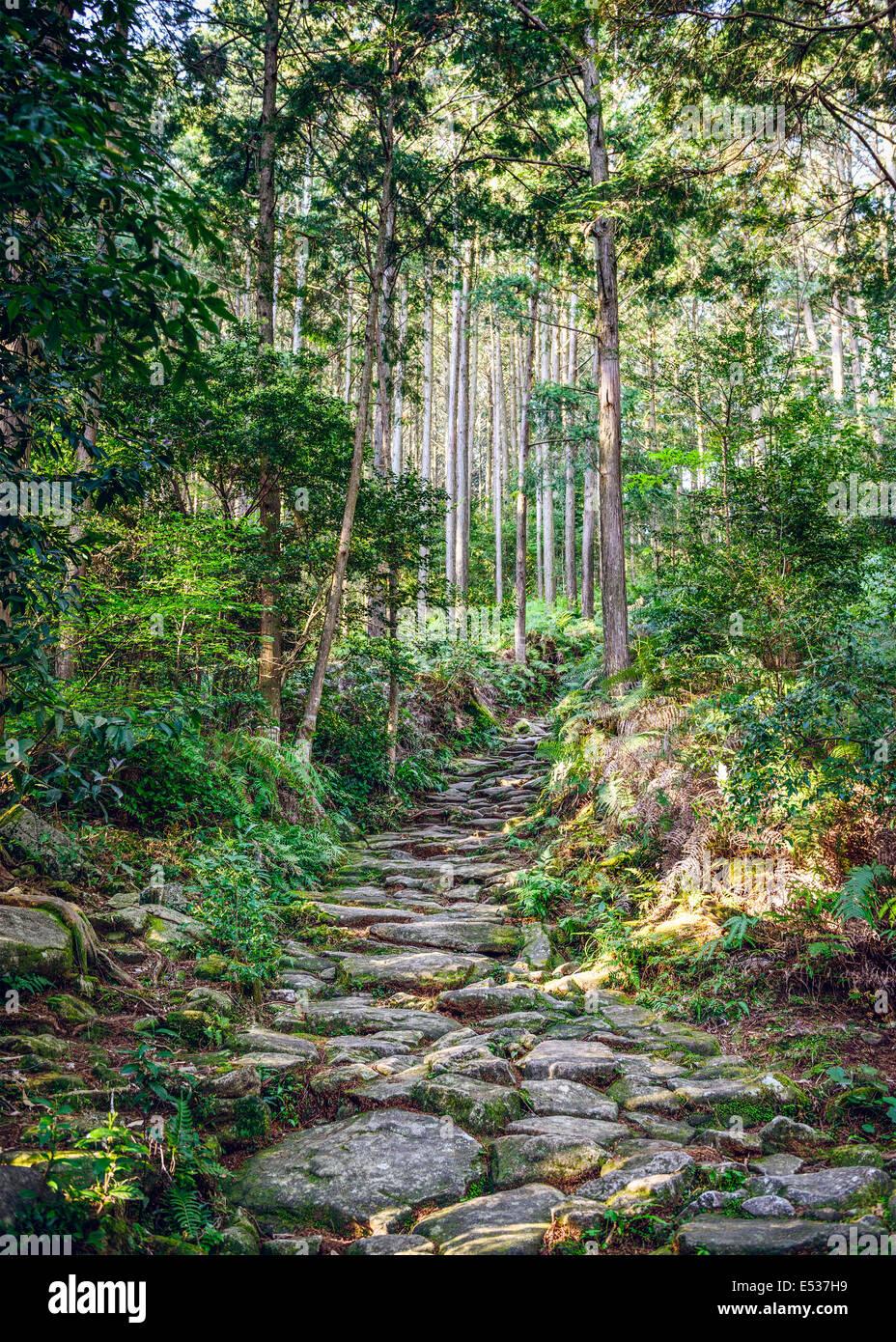 Kumano, Japan Matsumoto Pass. Der Pass ist Teil der Kumano Kodo, eine Reihe von alten Pilgerwege. Stockbild