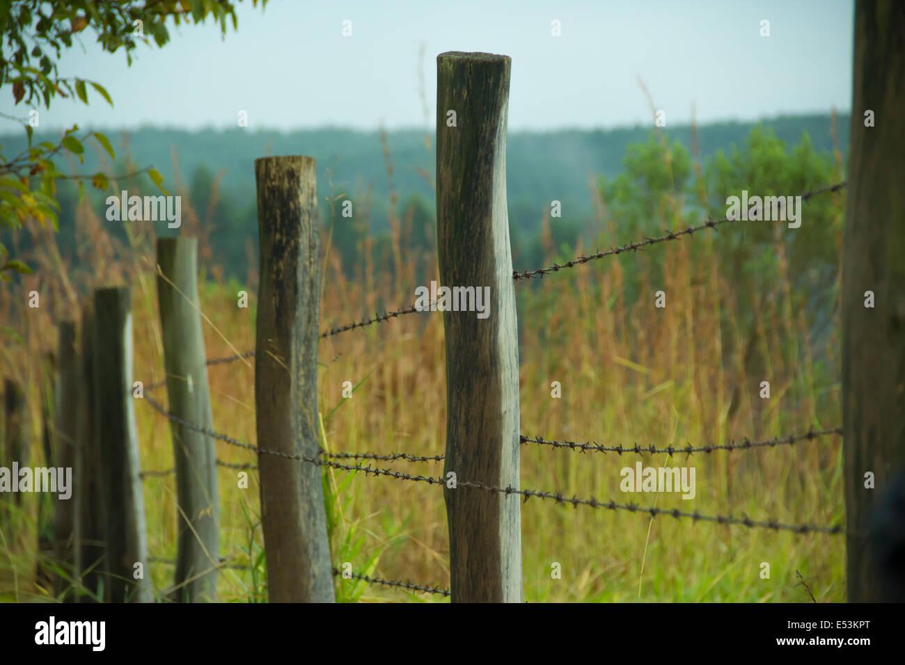 Zaun Aus Holz Und Stacheldraht Stockfoto Bild 71996144 Alamy