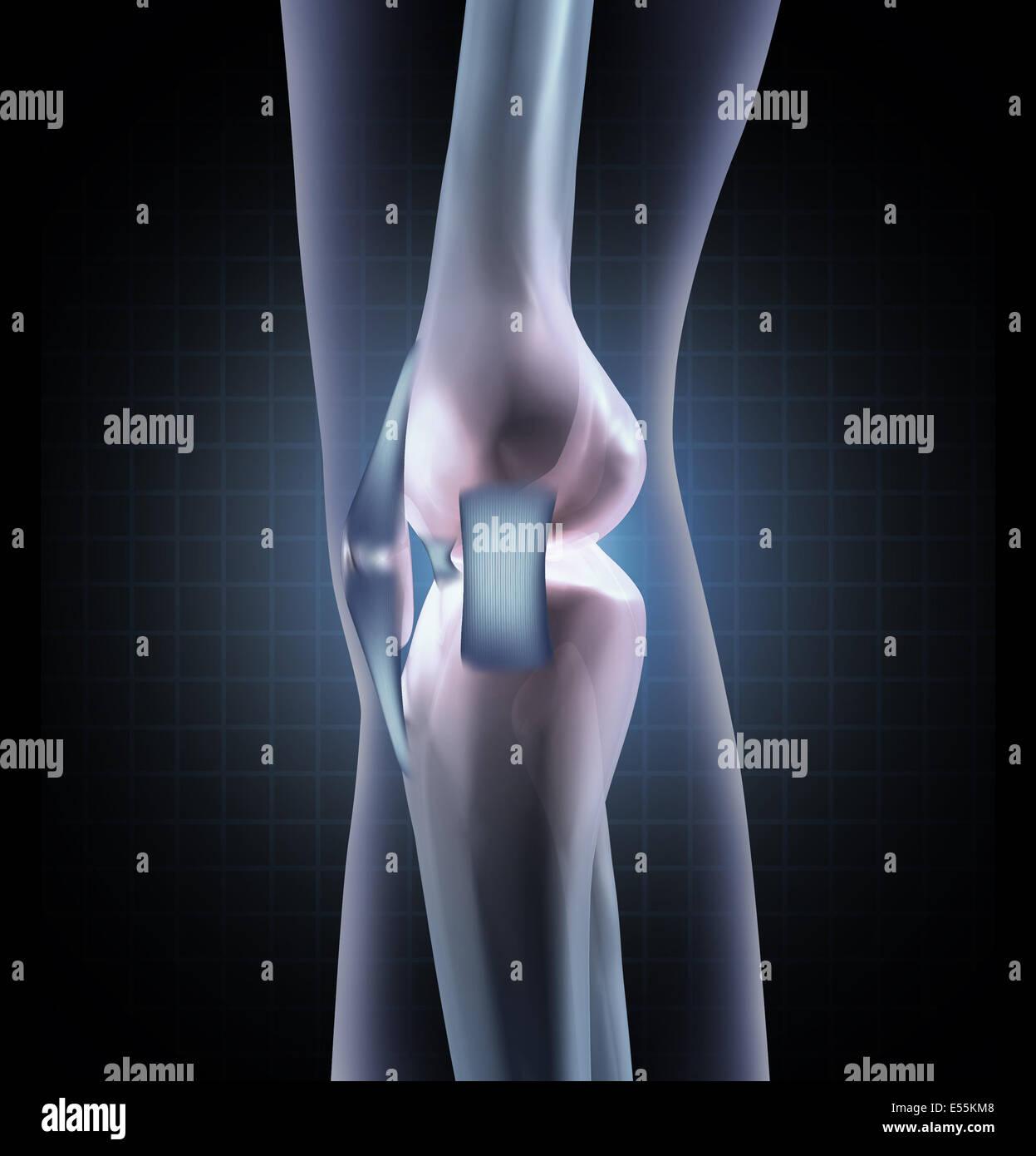 Knie Anatomie medizinisches Konzept als eine Sideview ein ...