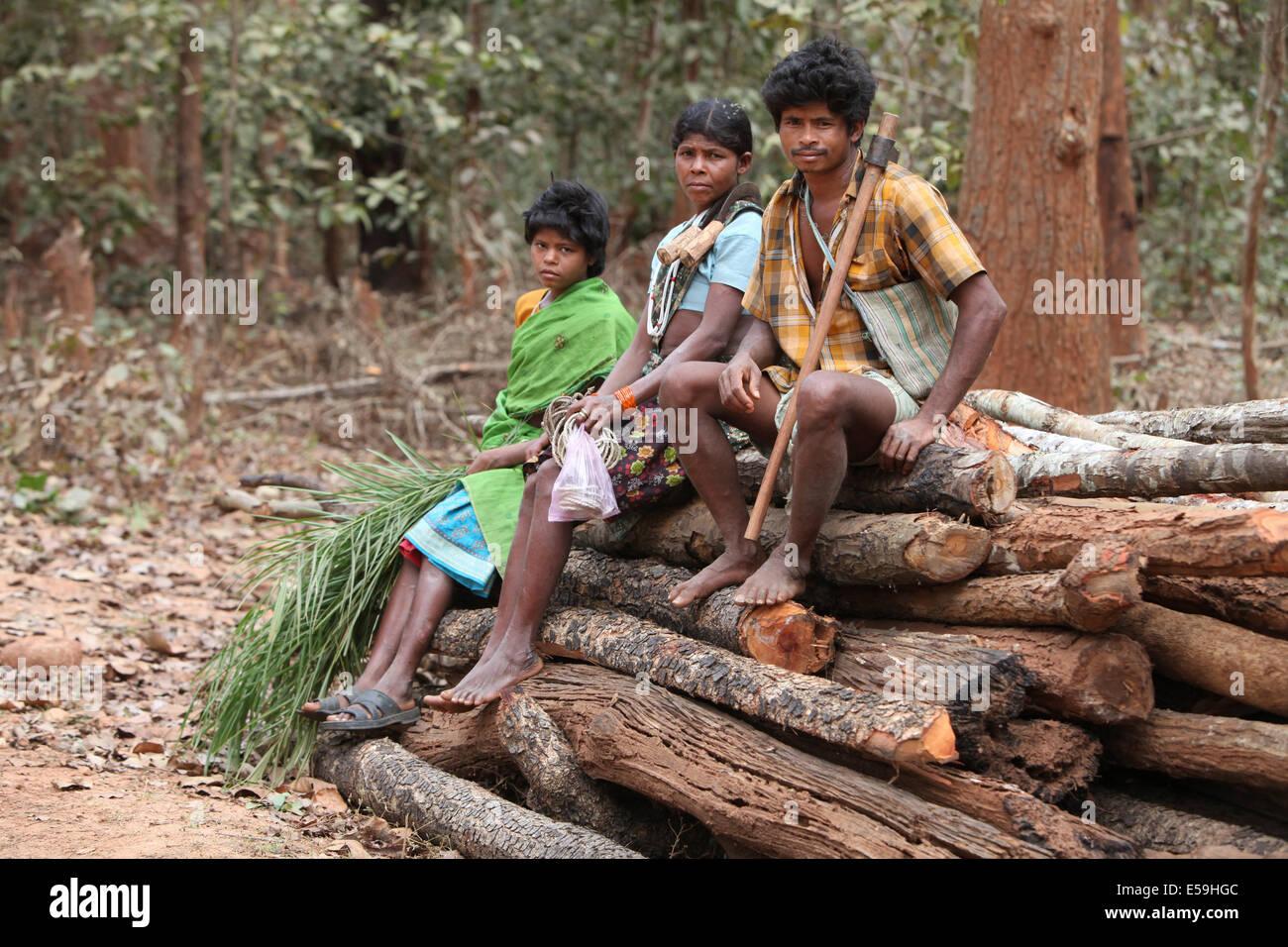 Abhuj Maria Tribal Familie sitzt auf Holz protokolliert im Rainpul Wald, Orrcha, Chattisgadh, Indien Stockbild